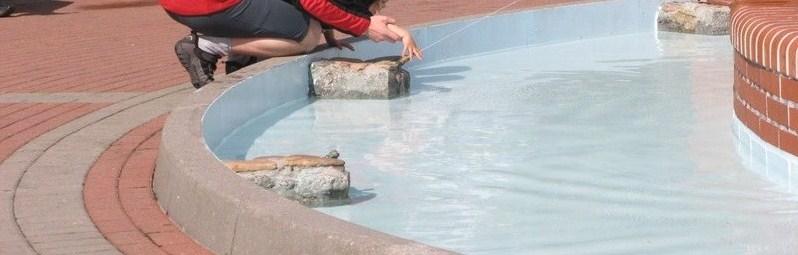 farba do basenów - efekt